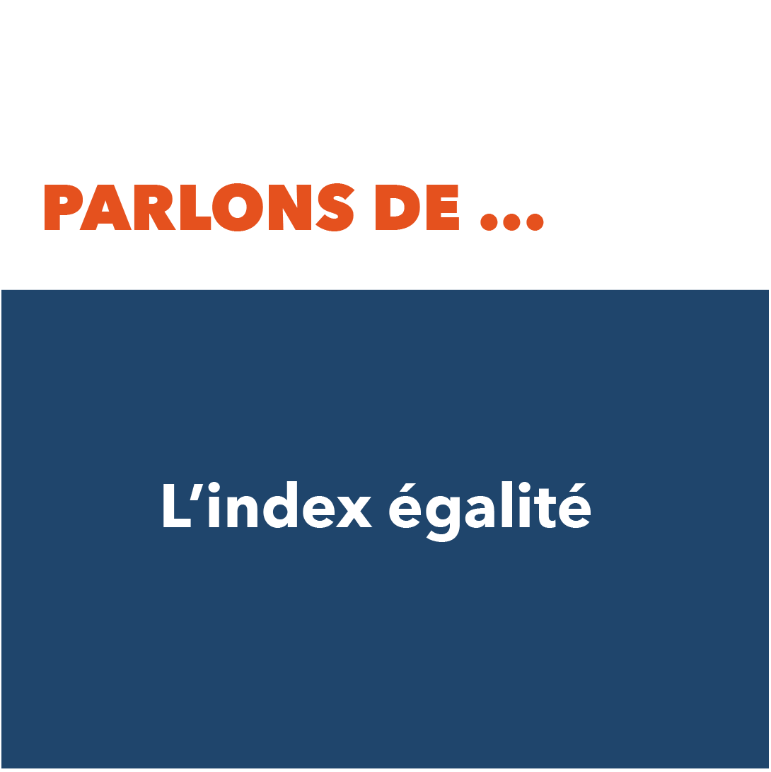 Index egalite hommes femmes